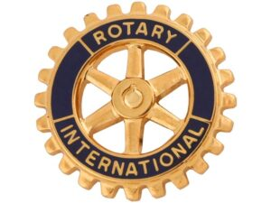 Carved Rotary Pin